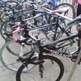 自転車台に佇むカノーバ。